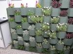 Muro Ecologico 002