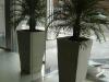 Vaso de concreto - 004